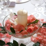 siena wedding Pink Rose Perfect happiness