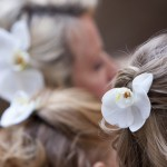 tuscany wedding planner Orchid  Wedding Ecstasy