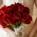 vineyard wedding tuscan Red rose and Italy, a fiery passionate connection