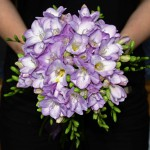 wedding reception in tuscany Freesia Innocent beauty, Friendship